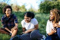 Gruppo di amici seduti sull'erba — Foto stock
