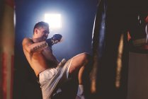 Boxer training in gym — Stock Photo