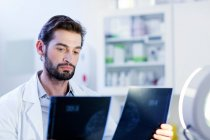 Doctor looking at xray image — Stock Photo