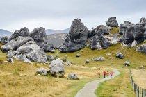 Hikers at Arthurs Pass — Stock Photo