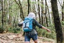 Backpacker spazieren im Wald — Stockfoto