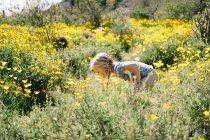 Girl in wildflowers meadow — Stock Photo