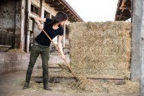 Female farmer pitch forking straw — Stock Photo