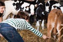 Femmina contadino e ragazzo indicando vitelli — Foto stock