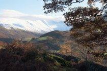 Schneebedeckte Berge oberhalb von Martindale — Stockfoto