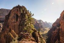 Parque nacional de Zion - foto de stock