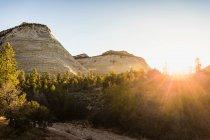 Мальовничим видом шашки Mesa — стокове фото