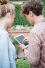 Couple in garden using digital tablet — Stock Photo