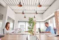Colleagues in office working at desks — Stock Photo