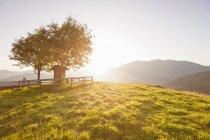 Сонце світить над пагорбами сільської — стокове фото