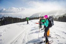Gruppo di persone sci negli alberi — Foto stock