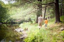 Pai e filho caminhando na floresta — Fotografia de Stock