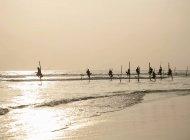 Grand groupe de pêcheurs sur pilotis au coucher du soleil — Photo de stock