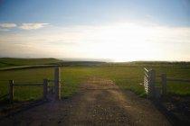 Грязная дорога на сельском травянистом поле — стоковое фото