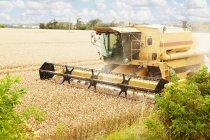 Drescher arbeitet im Getreidefeld — Stockfoto
