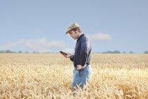 Landwirt mit Handy im Ernte-Feld — Stockfoto