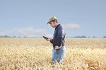Farmer using cell phone in crop field — Stock Photo