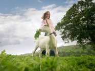 Девочка кормит козу в поле — стоковое фото