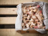 Box of ginger roots — Stock Photo