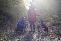 Young couple and their three whippets in woods — Stock Photo