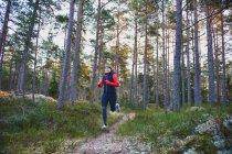 Вид спереду, жінки, що працюють у лісі — стокове фото