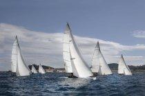 Flotte von Segelyachten — Stockfoto