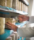 Taking sample of blue cheese — Stock Photo