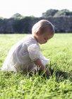 Дівчинка грає у високій траві — стокове фото
