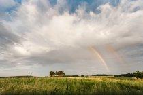 Vista do arco-íris no campo — Fotografia de Stock