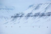 Motoslitte in direzione del ghiacciaio Von Post — Foto stock