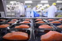 Salmon fillets on packaging — Stock Photo