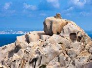 Formazioni rocciose sulla costa — Foto stock