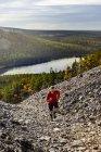 Бегун с трамплина, поднимающийся на крутой холм, Фаланкитунтури, Окланд, Финляндия — стоковое фото