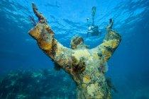 Плывущий под водой норвежец и статуя на переднем плане — стоковое фото