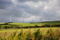 Wind farm over green field — Stock Photo