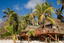 Пляж хижины и пальмовых деревьев в ярком солнечном свете, острова Кука — стоковое фото