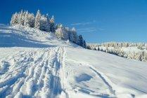Vue sur la piste de ski en Autriche — Photo de stock
