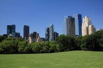 Vista in lontananza del parco urbano di New York City — Foto stock