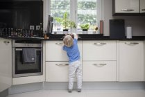 Young boy in kitchen, reaching up for muffins, rear view — Stock Photo