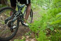 Куповані постріл чоловічого велосипедист в лісі — стокове фото