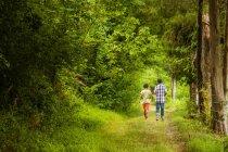 Vue arrière des garçons, les balades en forêt — Photo de stock
