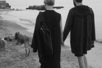 Junges paar Strand entlang spazieren hand in hand und zwei Hunde laufen voraus, Rückansicht — Stockfoto