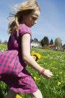 Fille cueillette des fleurs sauvages dans le champ — Photo de stock