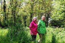 Casal mais velho andando na floresta — Fotografia de Stock