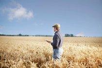 Landwirt mit Tablet-Computer im Feld — Stockfoto