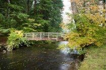 Tombe d'un pont en bois en argent — Photo de stock