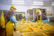 Робітники, які готують рибу хадок для паління в харчовому заводі — стокове фото