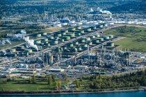 Green oil storage tanks in oil refinery — Stock Photo