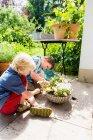 Мальчики сажают цветы на открытом воздухе — стоковое фото