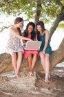 Donne che utilizzano il computer portatile mentre seduti su un ramo di un albero — Foto stock
